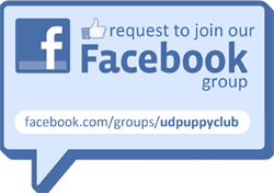 request to join our Facebook group